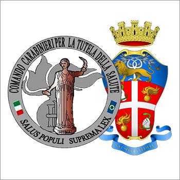immagine raffigurante il logo Comando Carabinieri per la tutela della salute - NAS