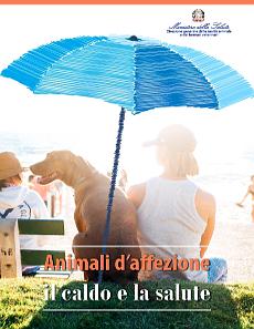 Animali d'affezione, il caldo e la salute