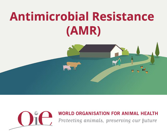 OIE - Antimicrobial resistance (AMR)