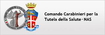 Immagine raffigurante il logo Comando Carabinieri per la tutela della salute (NAS)