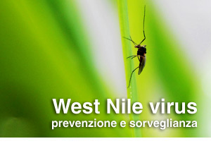 West Nile virus (infezione da)